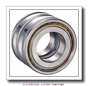 38 mm x 83 mm x 25,4 mm  Fersa F19067 cylindrical roller bearings