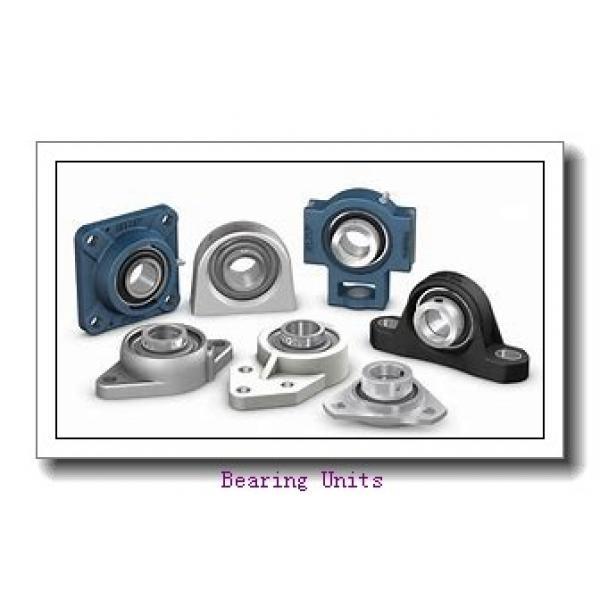 INA THE25 bearing units #1 image